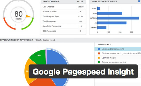 page-speed-insight